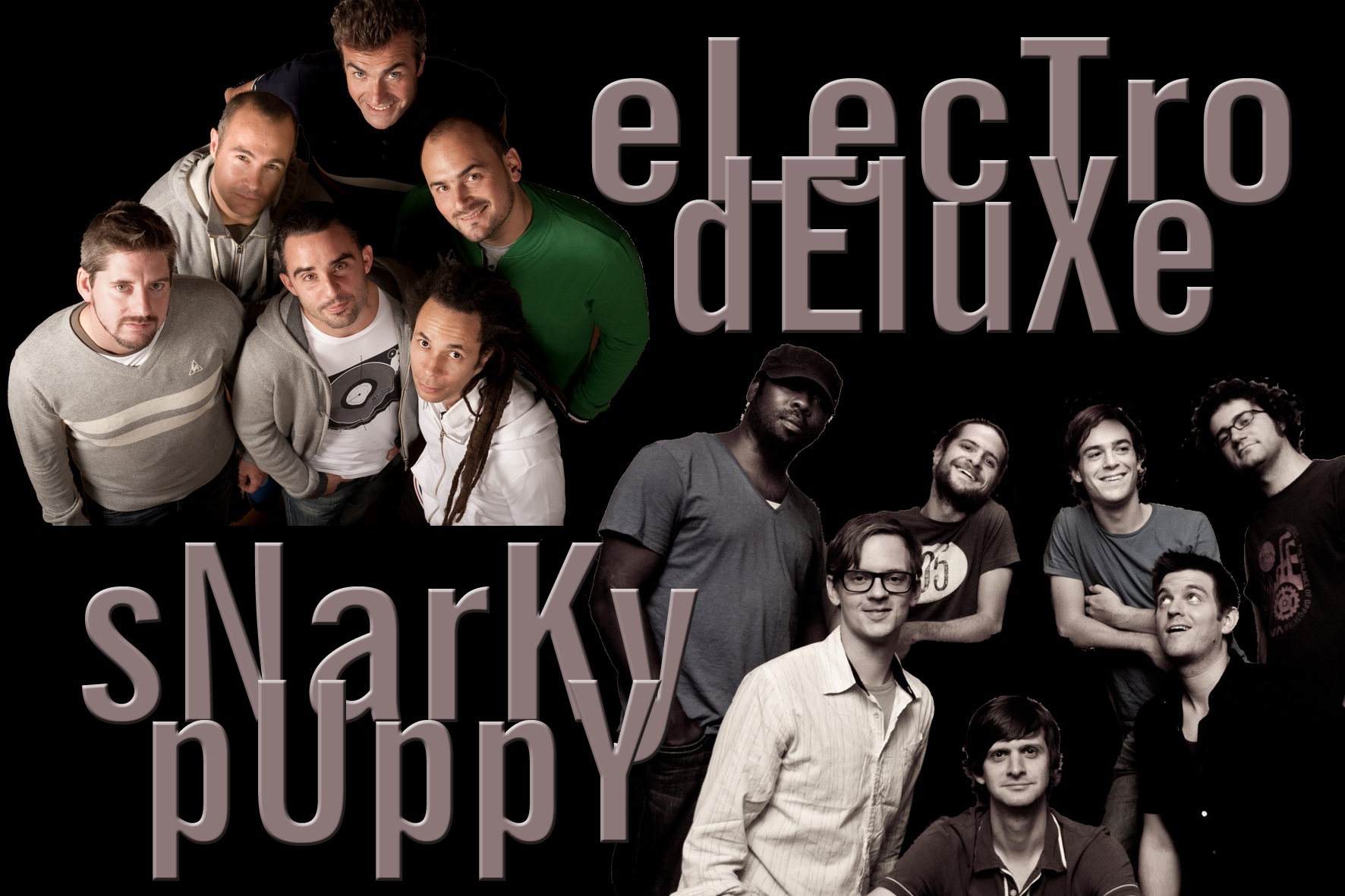 Electro Deluxe & Snarky Puppy